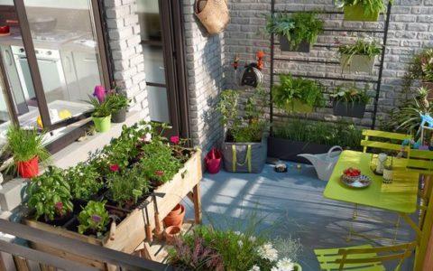 Pour commencer à jardiner : les choses à savoir