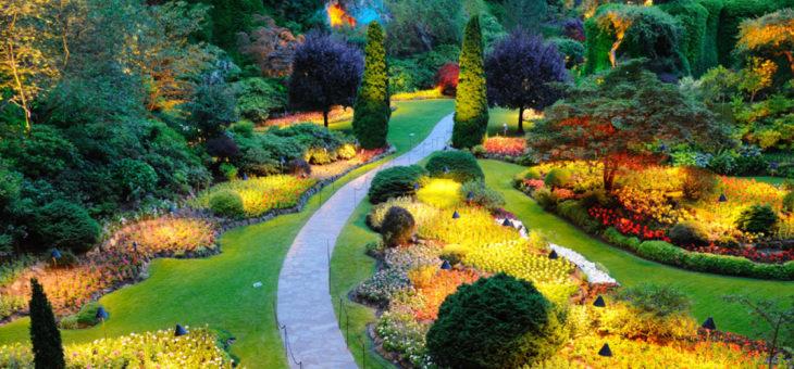 Top des conseils pour entretenir un beau jardin