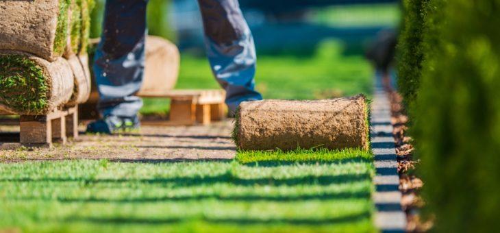 Deux conseils pour bien entretenir son jardin