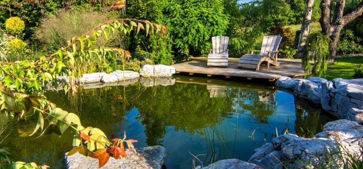 Agrémenter son extérieur : opter pour un jardin et un bassin